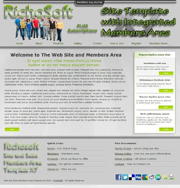 RichoSoft | Software and Services | Ultimate Site Template with ...